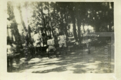 Crianças no Bosque da Princesa