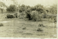 Paisagem do Campo Belo