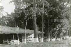 Restaurante do Bosque da Princesa
