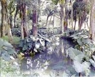 Bosque da Princesa